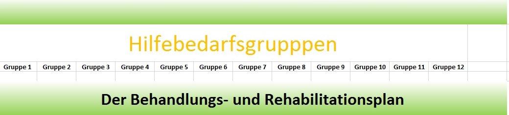 behandlungs und rehabilitationsplanung